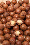 Macadamia καρύδια textue Στοκ εικόνες με δικαίωμα ελεύθερης χρήσης