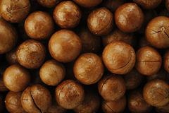 macadamia Foto de archivo libre de regalías