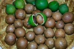 macadamia Imagenes de archivo