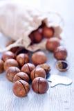 macadamia стоковое фото