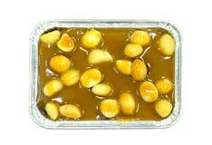 Macadamia. Stock Image