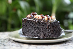 Macadamia brownie Royalty Free Stock Photography