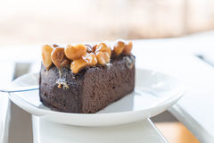 Macadamia chocolate cake Royalty Free Stock Photo