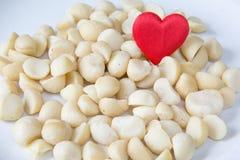 Macadamia del amor Imágenes de archivo libres de regalías