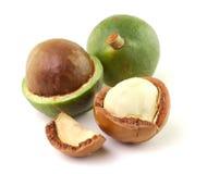 Macadamia dokrętki na białym tle Zdjęcie Royalty Free