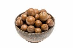 Macadamia dokrętki w filiżance Obraz Stock