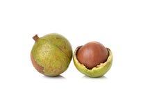 Macadamia dokrętki Obraz Stock