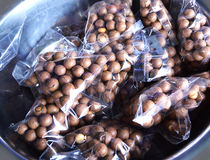 Macadamia fruits Royalty Free Stock Photos