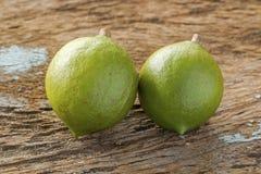 Macadamia in husk Stock Photography