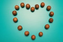 Macadamia logo heart on Valentine`s Day. Heart made of nuts on a blue background