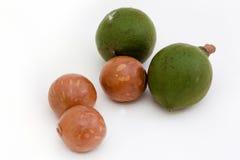 Macadamia-Mutter stockfotos