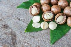 Macadamia na drewno stole Obraz Royalty Free