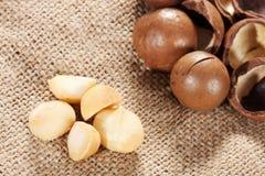 Macadamia noot stock foto's