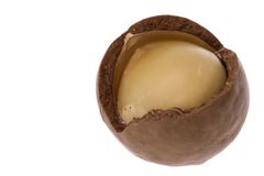 Macadamia Noot Royalty-vrije Stock Fotografie