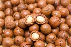 Macadamia noten royalty-vrije stock foto's