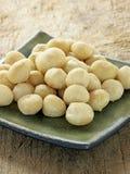 Macadamia noten Royalty-vrije Stock Afbeelding
