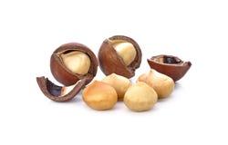 Macadamia noten op witte achtergrond worden geïsoleerd die Royalty-vrije Stock Foto