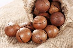 Macadamia nut. In the sack Royalty Free Stock Image