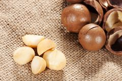 Macadamia nut. In the sack Stock Photos