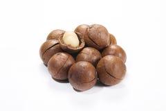 Macadamia nut. On white background Royalty Free Stock Photo