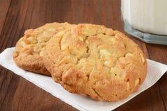 Macadamia nut cookies Stock Photography