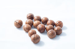 Macadamia nut Royalty Free Stock Images