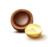Macadamia nut with shell. Vector realistic brocken macadamia nut with shell close up side view  on white background Royalty Free Stock Photography