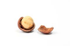 Macadamia nut and shell Royalty Free Stock Photos