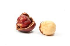 Macadamia nut and shell Royalty Free Stock Photography