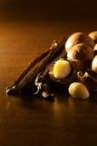 Macadamia nut and vanilla bean. Food  ingredients Stock Images
