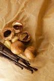 Macadamia nut and vanilla bean. Food  ingredients Stock Photo