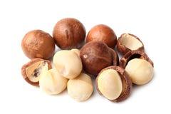Macadamia nut Stock Images