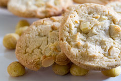 Macadamia nut and white chocolate cookies. A small stack of macadamia nut and white chocolate cookies Royalty Free Stock Photo