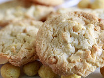 Macadamia nut and white chocolate cookies. Royalty Free Stock Photos