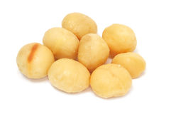 Macadamia nuts Stock Images