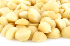 Macadamia nuts. Fresh organic macadamia nuts on white background Stock Image