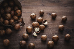 Macadamia nuts Stock Photos