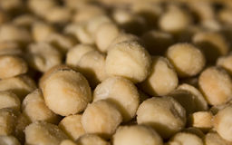 Macadamia Nuts. A pile of salted macadamia nuts. Yum! Sharp focus on middle nuts Stock Photography