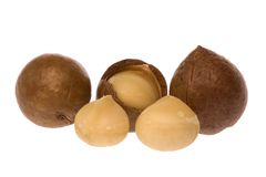 Macadamia Nuts. Isolated macro image of Macadamia nuts Royalty Free Stock Photography