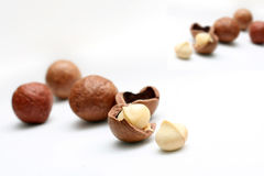 Macadamia nuts. Isolated on white background royalty free stock photos