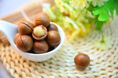 Macadamia nuts in bowl  Royalty Free Stock Photos