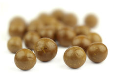 Macadamia nuts. Close-up of macadamia nuts stock photography