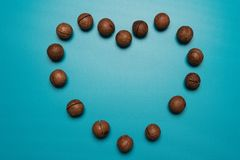 Macadamia nuts heart studio image. Macadamia logo heart on Holiday.