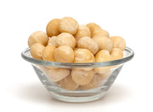 Macadamia nuts Royalty Free Stock Photo