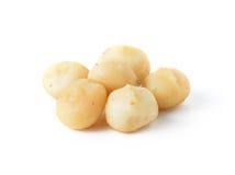 Macadamia nuts. Isolated on white background Royalty Free Stock Image