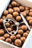 Macadamia Nuts and Nutcracker Royalty Free Stock Photos