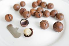 Macadamia nuts are on the plate. Next is a tool for opening royalty free stock photo