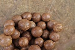 Macadamia nuts Stock Photos