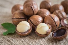 Macadamia nuts on sackcloth Royalty Free Stock Photography