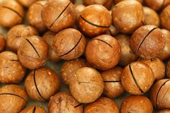 Macadamia nuts scattered on the table stock photo